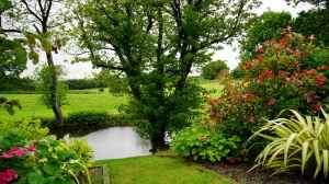 Natural water features for the garden